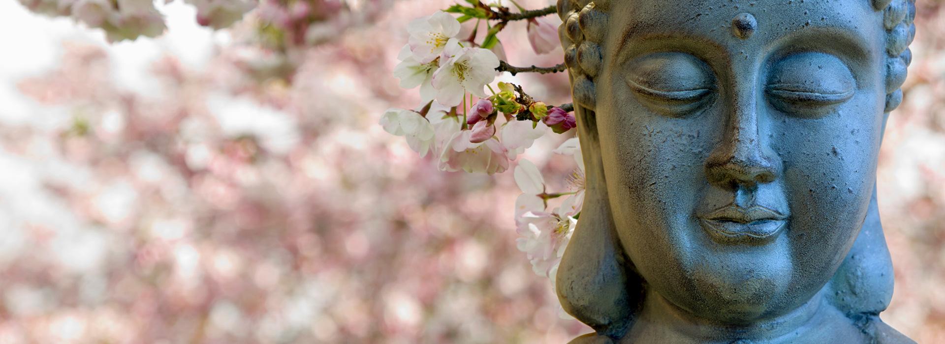 Inner Spring Wellness